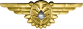 WWII Naval Flight Surgeon Insignia.png