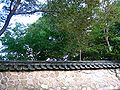 Wall-Bulguksa-Gyeongju-Korea-01.jpg