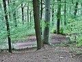 Wanderweg zur Burg Hohen Neuffen - panoramio.jpg