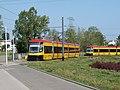 Warschau tram 2019 05.jpg