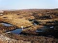 Water Vole Colony near Allt Ruighe an t-Sìdhein Watershed - geograph.org.uk - 1234698.jpg