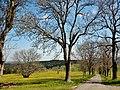 Weg - panoramio (34).jpg