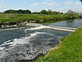 Weir on the river Ribble near Mitton - geograph.org.uk - 1097031.jpg