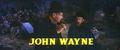 Westwon trailer Wayne.png