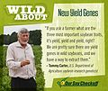 Wild About- New Yield Genes, Square (19783590179).jpg