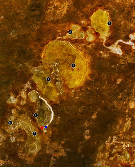 Satellite map of the Willandra Lakes area.Sites marked with dots are LM1 (red) and LM3 (blue).