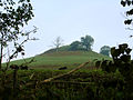 Wimley Hill - geograph.org.uk - 273886.jpg