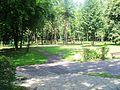 Wojkowice Park (2).jpg