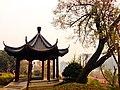 Wuchang Simenkou Shangquan, Wuchang, Wuhan, Hubei, China, 430000 - panoramio (40).jpg