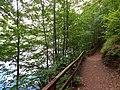 Yürüyüş Yolu.. - panoramio.jpg