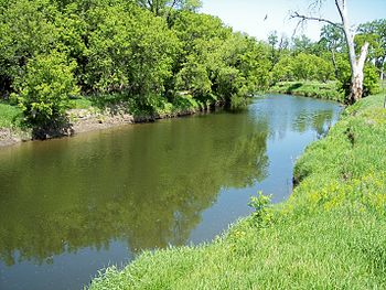 The Yellow Bank River as viewed downstream fro...