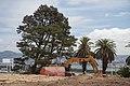 Yerba Buena Island - Wichary (16267083661).jpg