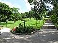 Yuen Long Park Lawn Area.jpg