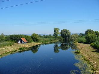 Zala (river) - The estuary of Zala river at Balaton Lake, Hungary