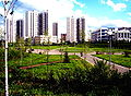 Zelenograd - 16th microdistrict.jpg