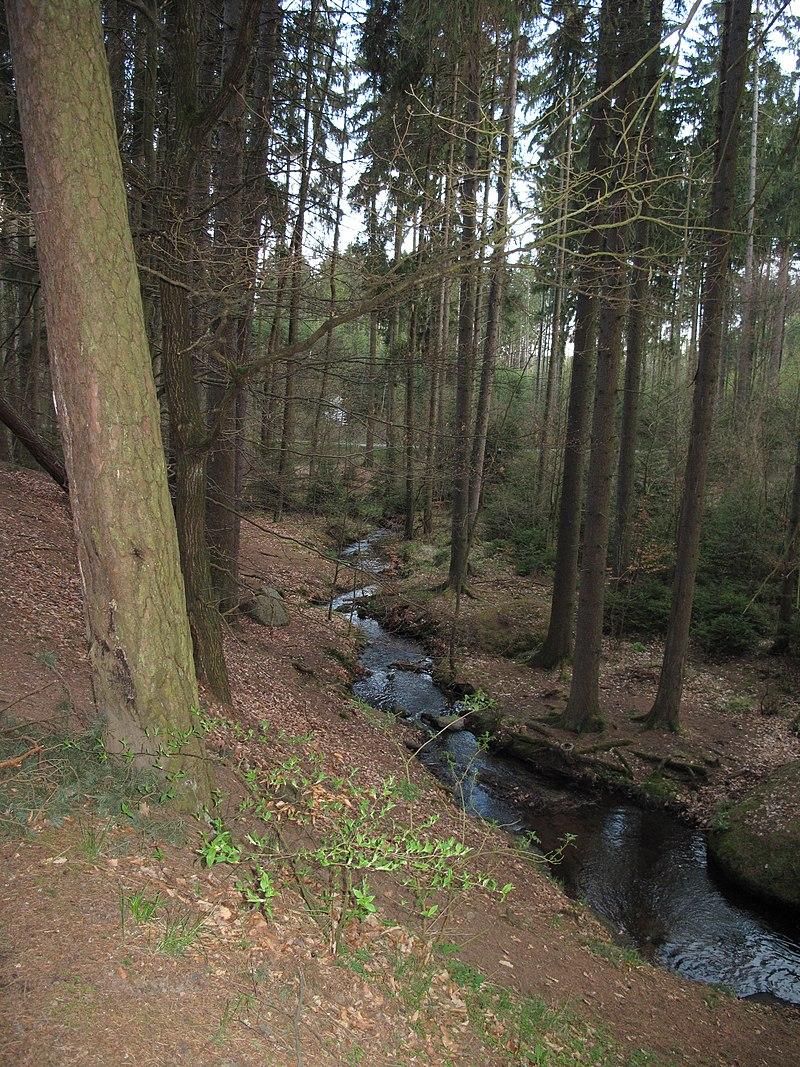 Potok pod Zvánovicemi