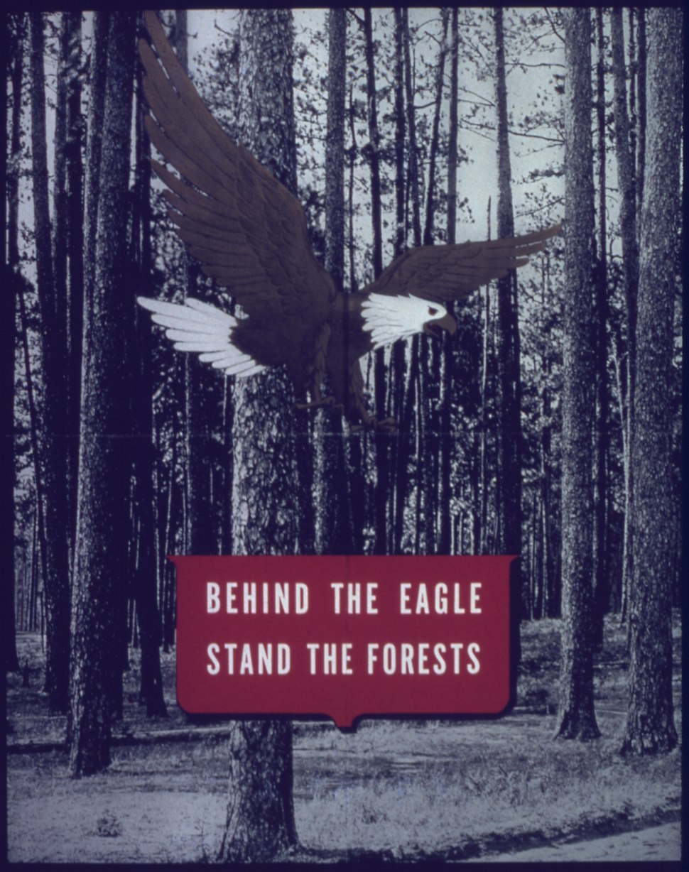 """""""Behind the eagel stand the forests"""" - NARA - 513948"""