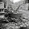 """""""Kotu"""" za """"patošl"""", Male Lašče 1960.jpg"""