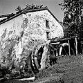 """""""Maln"""" (mlin) pri Kovačevih, Padež (Ostrovica) 1955.jpg"""
