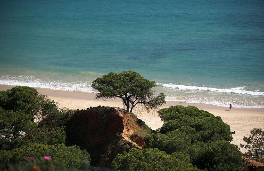 """""""Praia da Falésia"""" (5514761468)"""