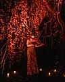 """To America"" in Green-Wood Cemetery - 50525850533.jpg"