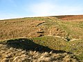 (A third) old mine shaft near Lintzgarth (2) - geograph.org.uk - 1627486.jpg