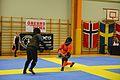 Örebro Open 2015 166.jpg