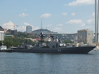 Russian destroyer <i>Admiral Tributs</i>