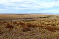 В северном направлении - panoramio (17).jpg