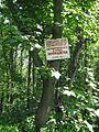 Дендрологічний парк 18.jpg