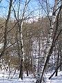 Долина реки Котловки и лыжная горка 2018-03-29.jpg
