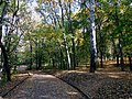 "Дорожки в парке (парк ""Швейцария"").jpg"