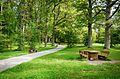 Медумский парк - panoramio (1).jpg