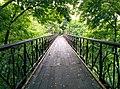 Міст закоханих у Маріїнському парку.jpg