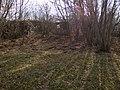 Окрестности поселка Красное Утро - panoramio (12).jpg