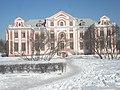 Палаты Кикина А. В. со стороны площади Растрелли.jpg