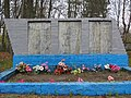 Пам'ятка в селі Володькова Дівиця 24.jpg