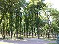 Парк Шевченка 3.JPG