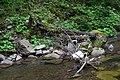 Сколівські бескиди Сміття DSC 0365.jpg