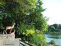 Хмельницька обл, парк в c.Макові 01.jpg