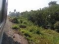 วิวข้างทางสถานีรถไฟเขาทโมน - panoramio.jpg