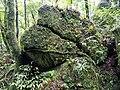 凱達格蘭巨石群2.jpg