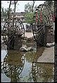 古镇尾部的水车 201009 - panoramio.jpg