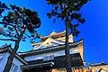 岡崎城 - panoramio (1).jpg
