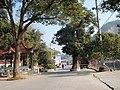 瞿岙村景色 - panoramio.jpg