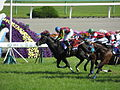 第149回天皇賞 - 149th Tenno Sho Spling (GI) - Kyoto Racecourse (May 4, 2014) (14089417186).jpg