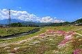 農具川河川公園 - panoramio.jpg