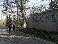 雨花台生态密林区 - panoramio (2).jpg