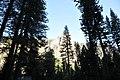 - panoramio (4938).jpg