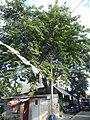 02917jfChurches Zapote Road Camarin North Caloocan Cityfvf 10.JPG